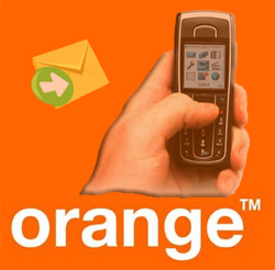 orange123131ddd