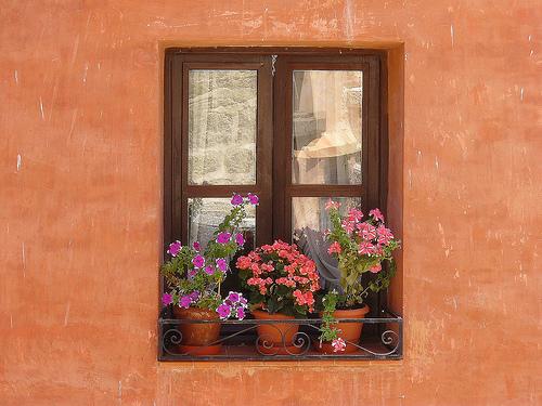 p_ventana001