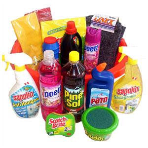 C mo ahorrar diluyendo los productos de limpieza c mo for Manual de limpieza y desinfeccion para una cocina