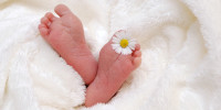 baby-718146_1280