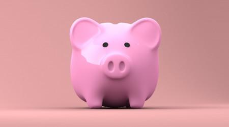 INE, Gobierno, ahorro
